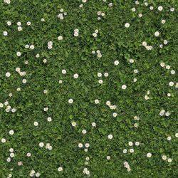 Printed carpet - COUNTRYDECOR